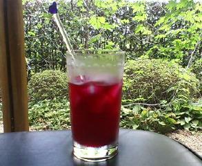 鮮やかな赤紫色のシソジュース